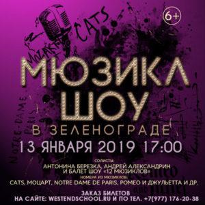 Сольный концерт Антонины Березка